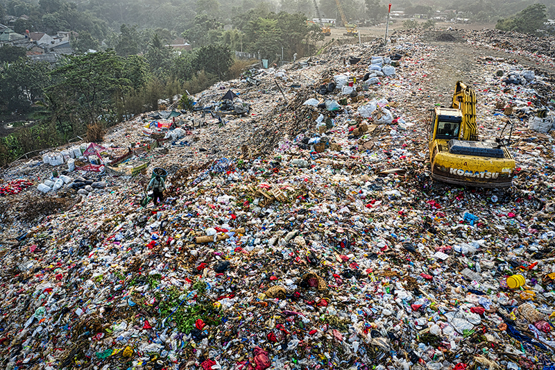 Plastic pollution: the impact of man on the environment